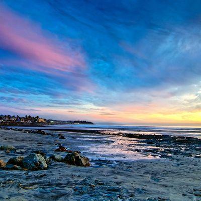 Fariba Namvar - Search San Diego