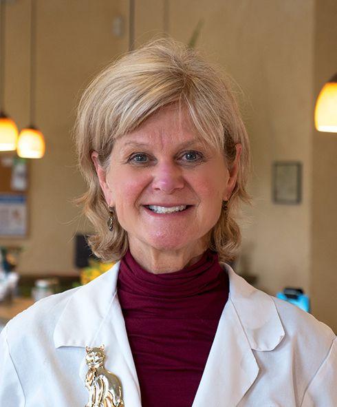 Judy L. Torchia, DVM