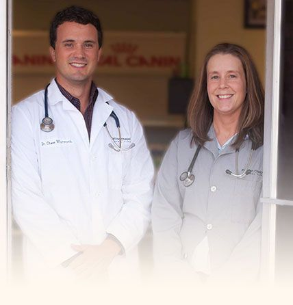 Patton Chapel Animal Clinic Doctors