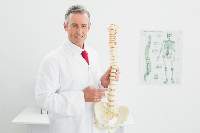 Spinal structure