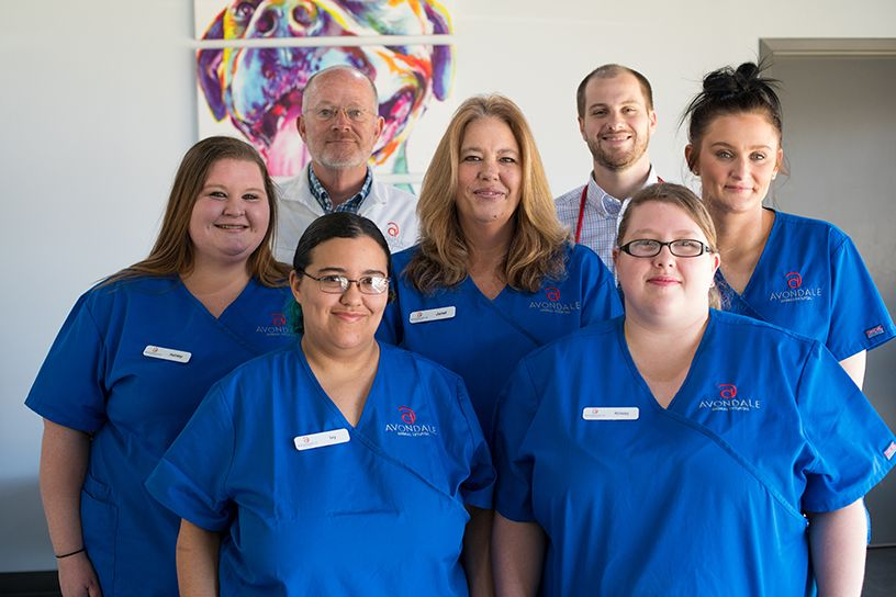 Avondale Animal Hospital Veterinary Team