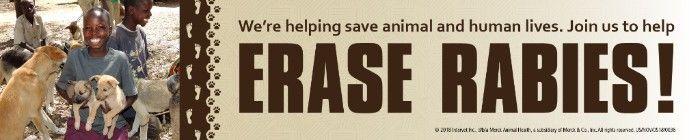 Erase Rabies
