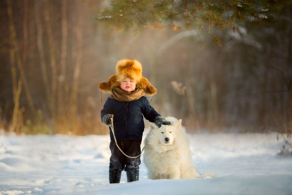Kid with dog in the winter