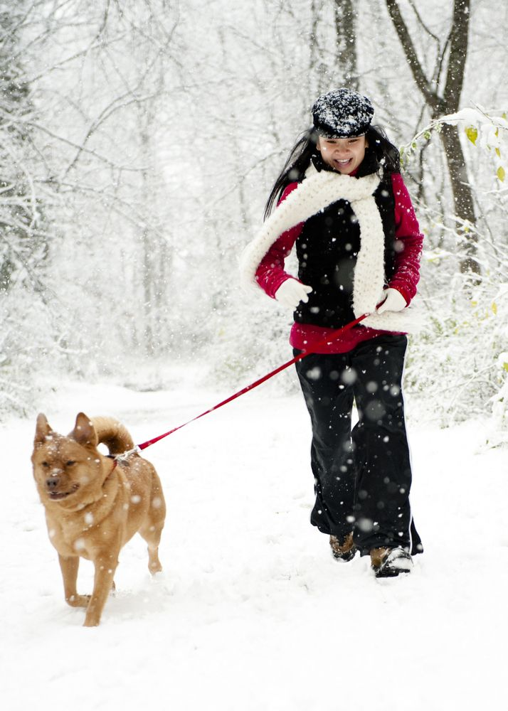 woman running with dog on snow