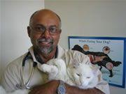 Dr. Trevor L. Rodrigues