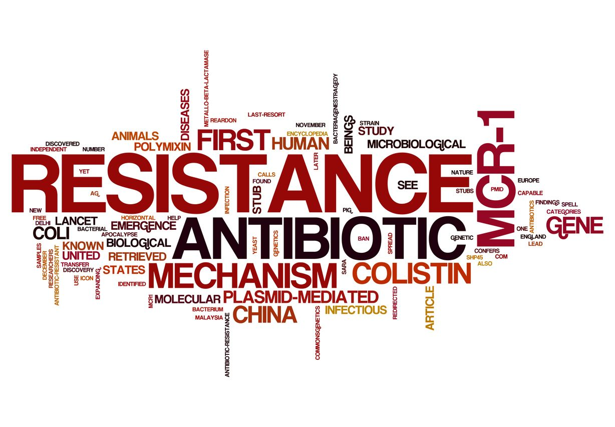 FINAL REPORT RELEASE: STRENGTHENING GOVERNANCE OF THE ANTIMICROBIAL RESISTANCE RESPONSE ACROSS ONE HEALTH IN CANADA