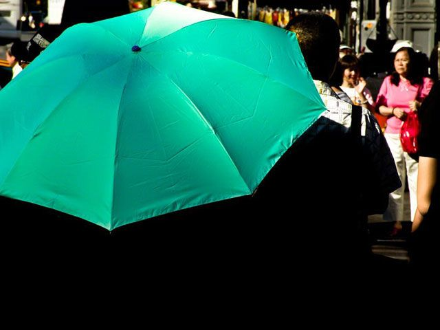 Green umbrella on a sunny day