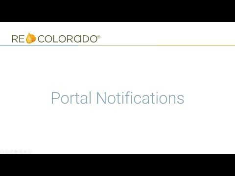 How to Activate and Schedule Portal Activity Notifications
