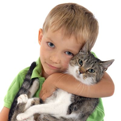boy and a cat