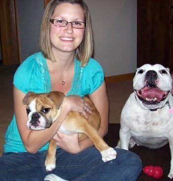 Va-Sarah New Berlin Animal Hospital Pet Examination services