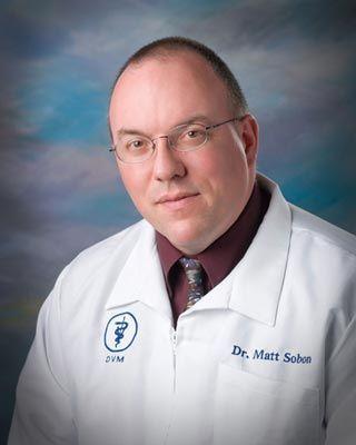 Dr. Matt Sobon