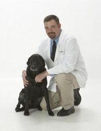 Dr. Troy J. Stafford , DVM