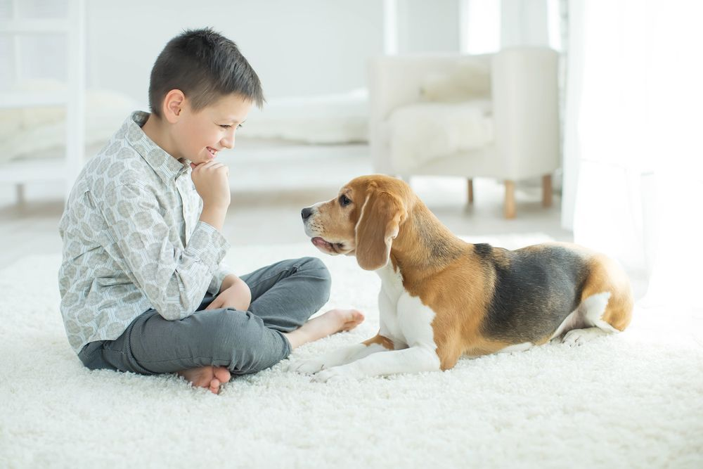 kid smiling at a dog
