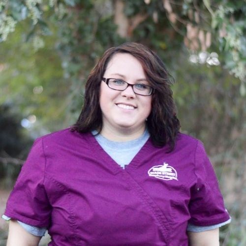 Kristen Nause Veterinary Technician & Groomer