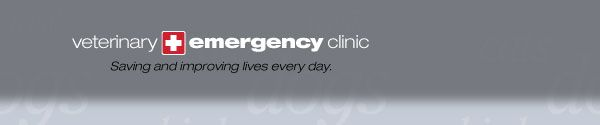 veterinary emergency clinic