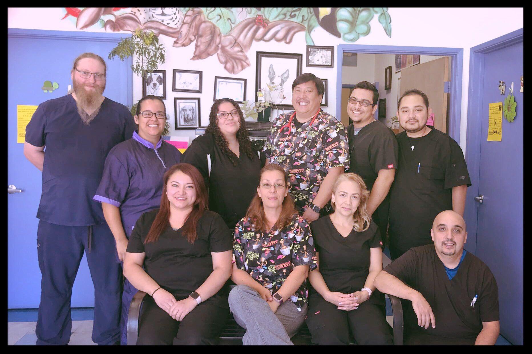 employees at amazon animal hospital