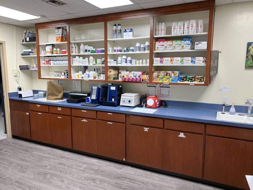 Full Pharmacy & Lab