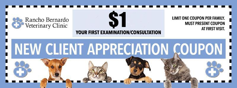 $1 First Time Client Exams