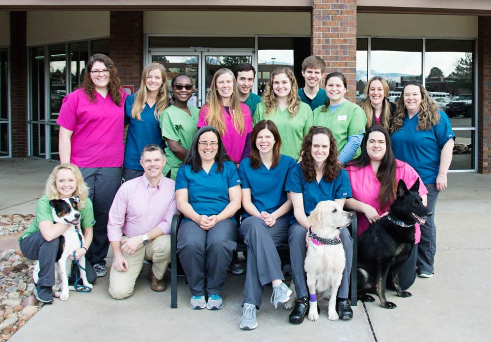 louisville family animal hospital team