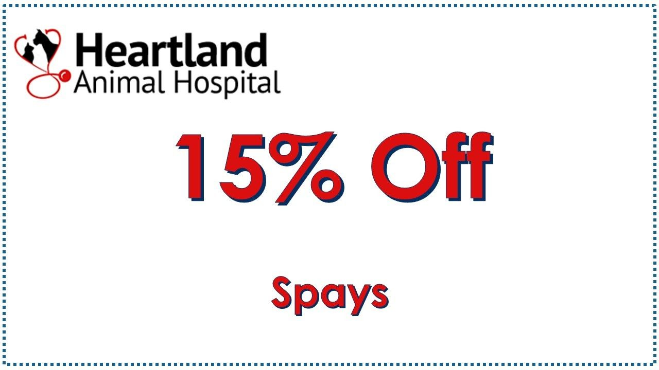 Save on Spays in July