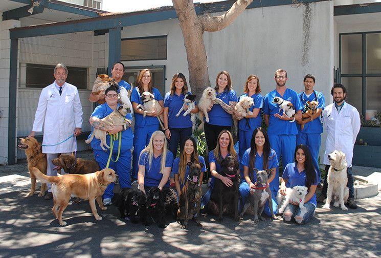 Rose Canyon Animal Hospital team