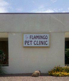 Flamingo Pet Clinic