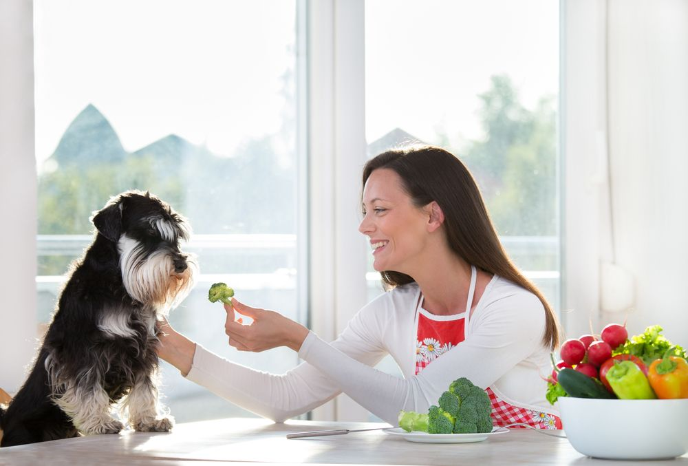 woman feeding her dog with vegetables