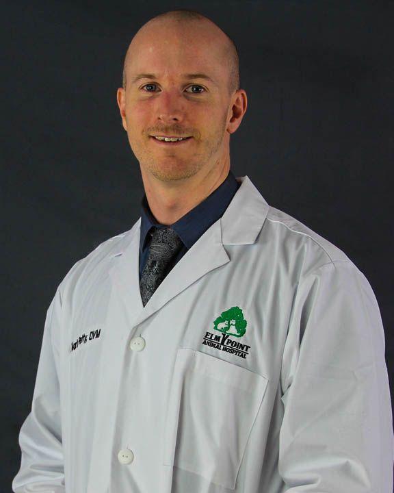 Dr. Mark Petty