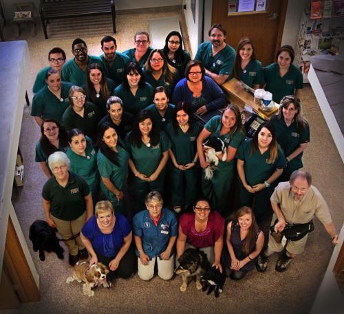 Desert Veterinary Clinic