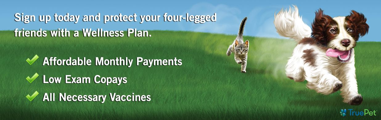 TruePet Wellness Plans