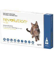 revolution feline