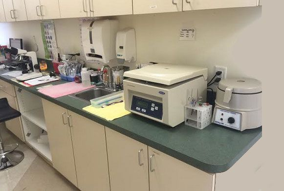 Laboratory - We can run in-house fecal, heartworm, urinalysis tests and more!
