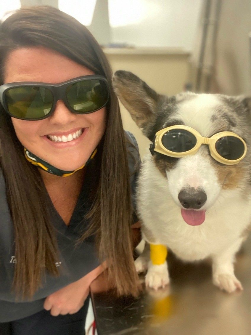 vet with her dog