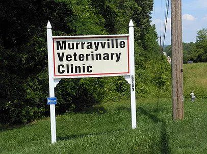 Murrayville Veterinary Clinic