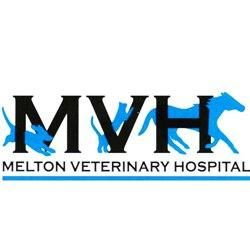 News at Southern Veterinary Partners | Ideal Vet Partner in