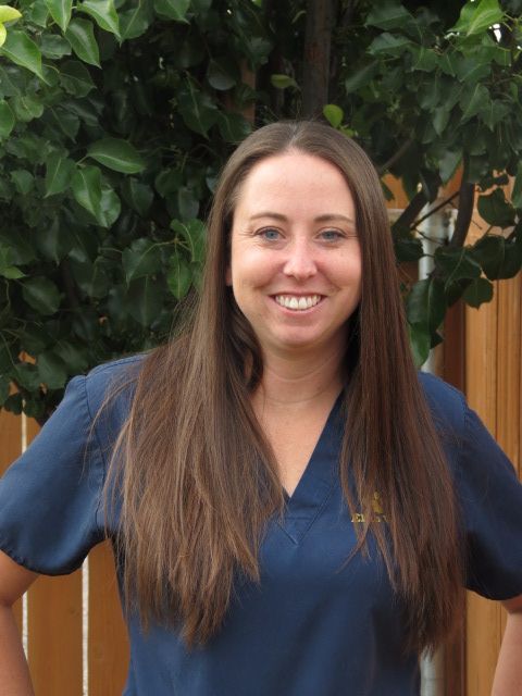 Ann, LVT - Inventory Manager