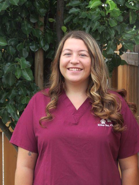 Courtney - Veterinary Technician Assistant