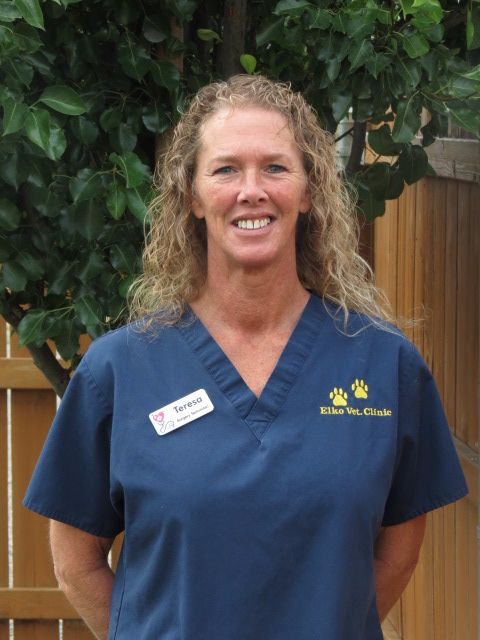 Teresa- Veterinary Technician Assistant