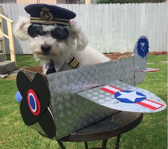 Captain Rupert