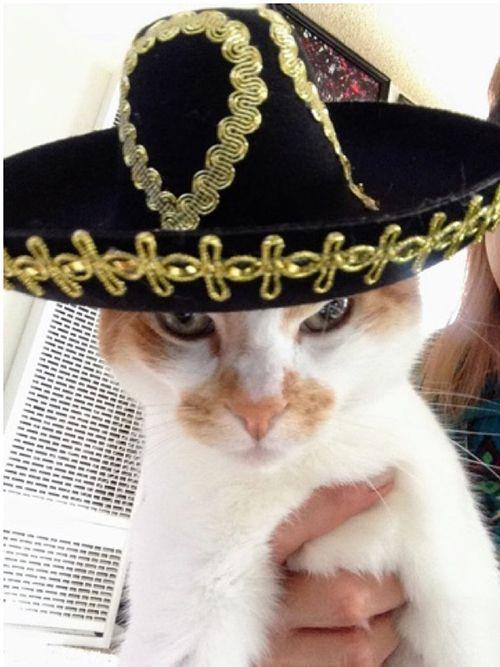 Mikan wearing a sombrero