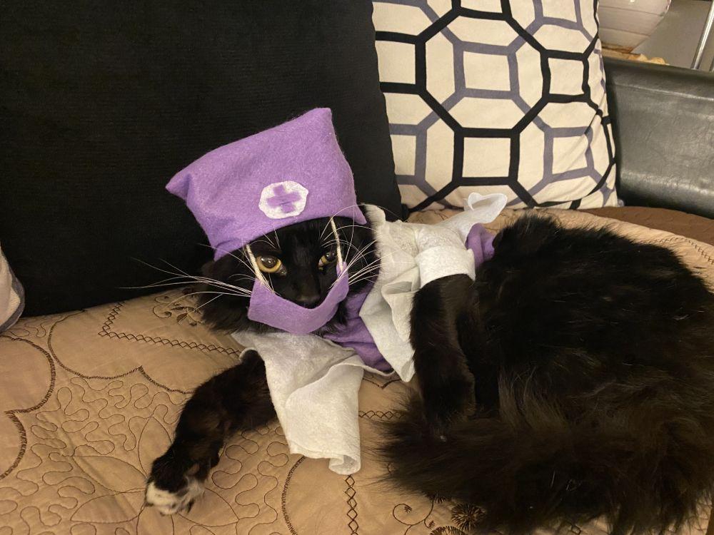 Tuna Luna as a nurse