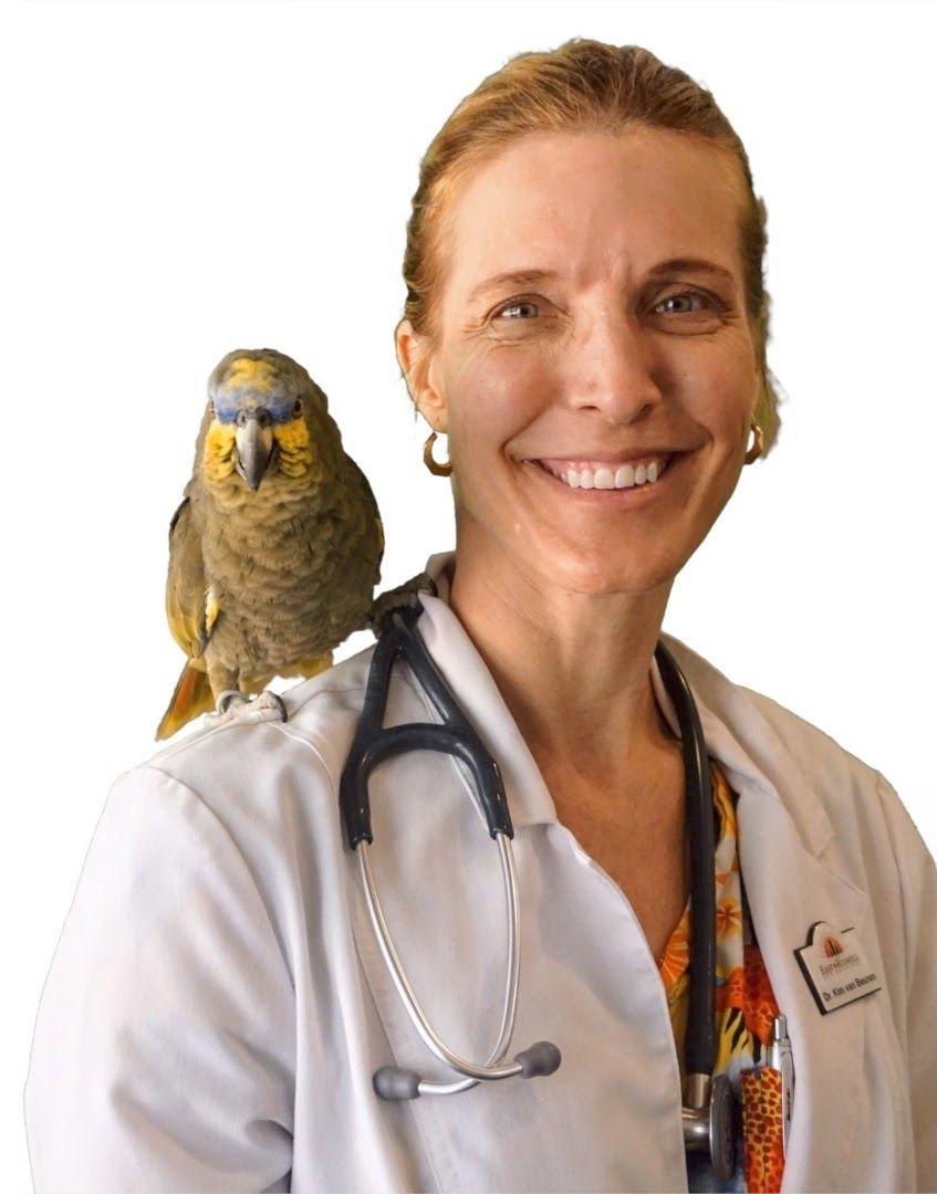 Dr. Kim van Beuren
