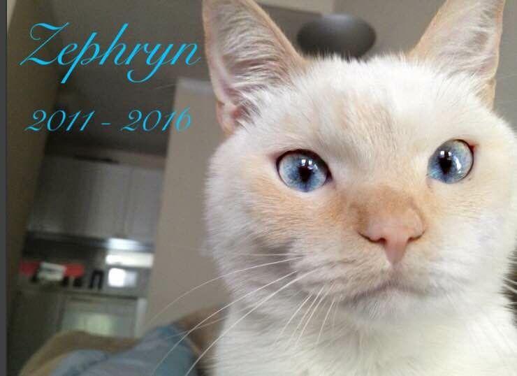 Zephryn