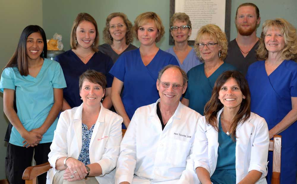 Soundside Animal Hospital team