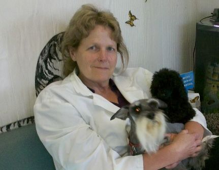 Del Mar Pet Hospital Staff