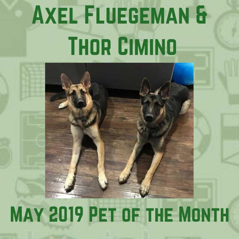 Axel Fluegeman & Thor Cimino