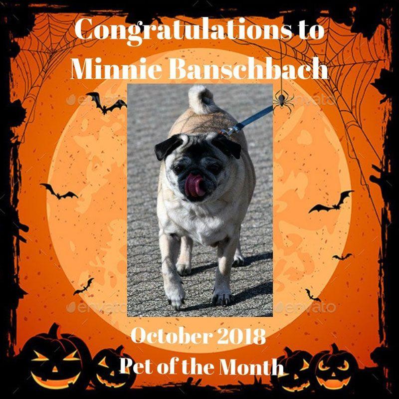 Minnie Banschbach