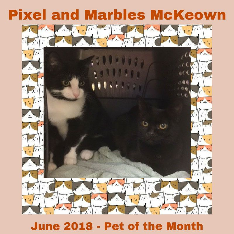 Pixel and Marbles Mckeown