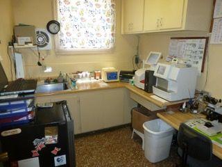 Laboratory Services at Petaluma Veterinary Hospital