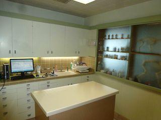 Petaluma Veterinary Hospital exam room 2 -image